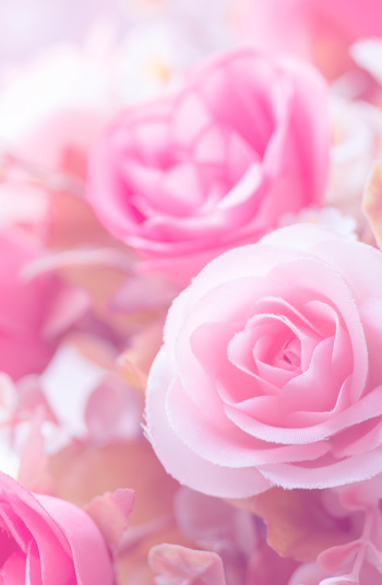 Seshai Care nota floral
